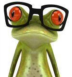The Frog Knows about a business divorce